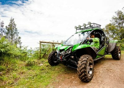 4x4 Buggy - Trail Dust and Mud 9