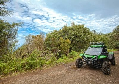 4x4 Buggy - Trail Dust and Mud 3