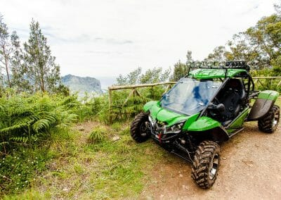 4x4 Buggy - Trail Dust and Mud 1