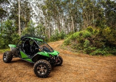 4x4 Buggy - Trail Dust and Mud 8