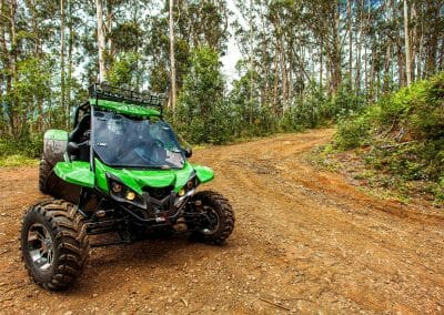 4x4 Buggy - Trail Dust and Mud 7