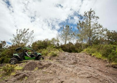 4x4 Buggy - Trail Dust and Mud 6