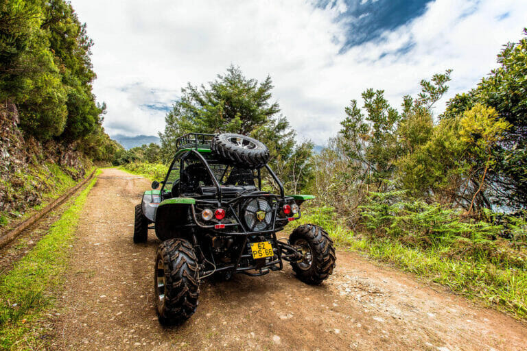 4x4 Buggy - Trail Dust and Mud