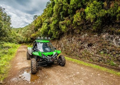 4x4 Buggy - Trail Dust and Mud 4
