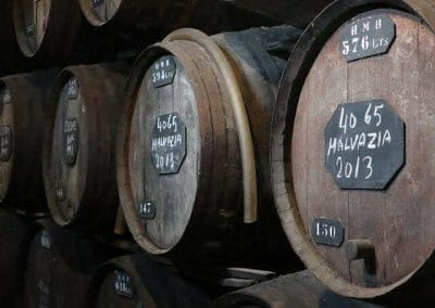 Wine Lodge Tour & Chocolate tasting & Gourmet Lunch 4